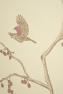 Barneby Gates The English Robin Wallpaper