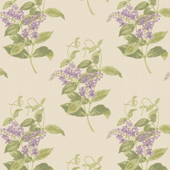 Cole and Son Madras Violet Wallpaper