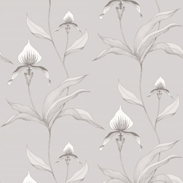 Cole and Son Orchid Wallpaper