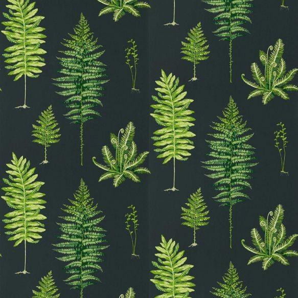 Sanderson Fernery Wallpaper