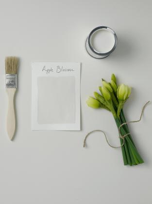 Rust-Oleum Paint Apple Blossom