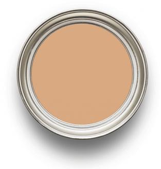 Earthborn Paint Freckle