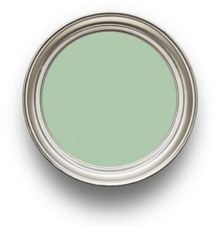 Earthborn Paint Cricket