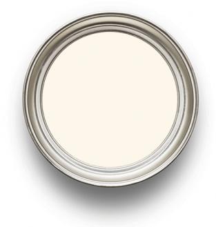 Sanderson Paint Silverflake