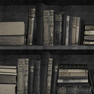 Young and Battaglia  Dark Bookshelf  Wallpaper