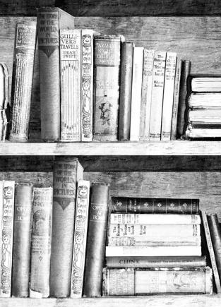 Young and Battaglia Photocopy Bookshelf  Wallpaper