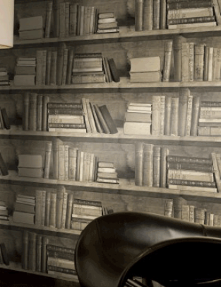Young and Battaglia Sepia Bookshelf Wallpaper